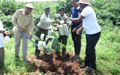 Varsity Marks Annual Environment Day